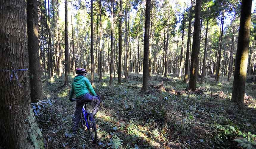 熊本阿蘇山單車腳踏車景點巡禮