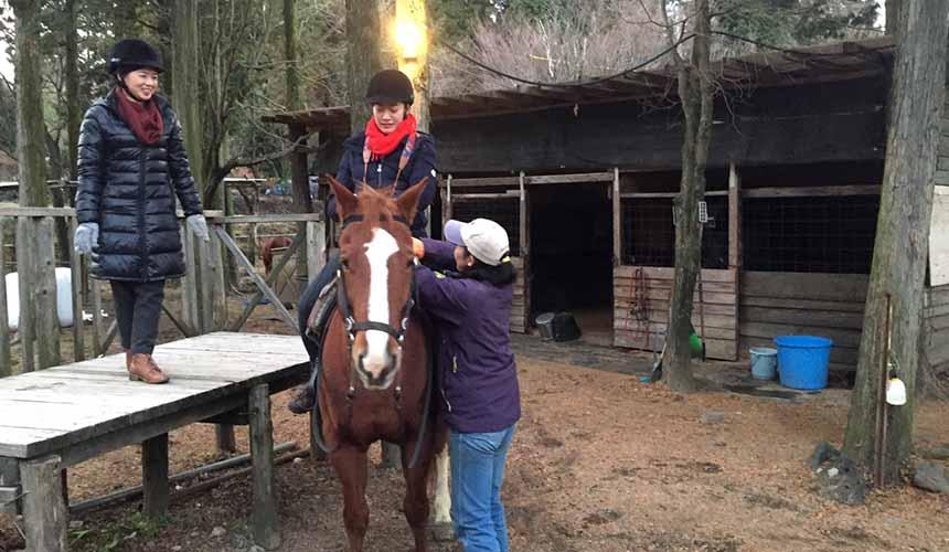 熊本阿蘇山騎馬體驗