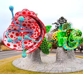 日本鹿兒島「霧島藝術之森」美術館的香格里拉之花