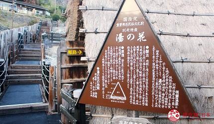 日本九州自由行別府溫泉旅行北九州機場交通推薦景點地獄巡禮巡遊海地獄血池地獄鬼石坊主地獄龍卷地獄明礬地獄岡本屋布丁