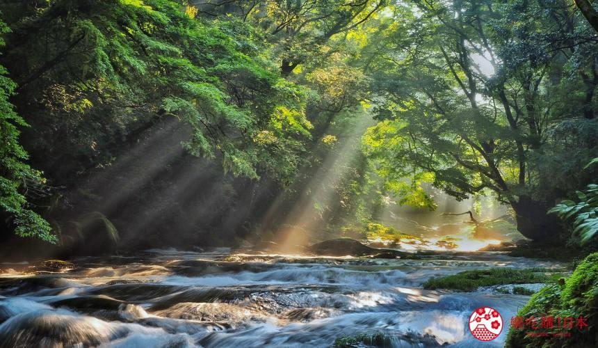 熊本县北景点推荐菊池溪谷