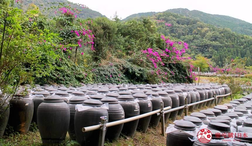 日本九州鹿兒島自由行行程安排看這篇!鹿兒島霧島市的黑醋餐廳「黑醋之鄉 桷志田」的黑醋罈子