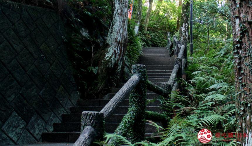 日本九州鹿兒島自由行行程安排看這篇!鹿兒島指宿市的唐船峽一景